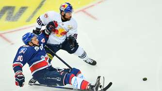 EHC startet in die Champions Hockey League - Seidenberg warnt vor Minsk